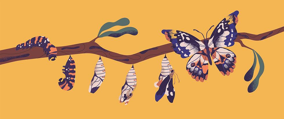 butterfly sm shutterstock_1482364103.jpg