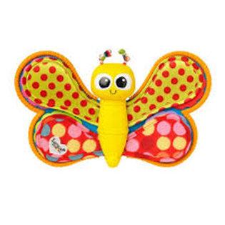 LAMAZE papillon photos