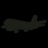 Avião_Vetor_Png.png