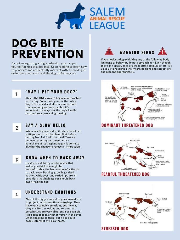 dog bite prevention.png
