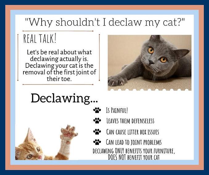 declaw.jpg