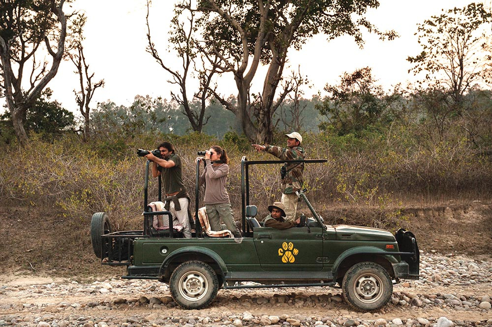 """Best wildlife safari in uttarakhand"" , ""top wildlife safari in uttarakhand"",""wildlife safari in uttarakhand"" , ""top safari in uttrakhand"" ,  ""best safari in uttarakhand"" , ""Camping in jim corbett"" , ""Uttarakhand Birding tour in jim corbett"" , ""Jungle safari in jim Corbett"" ,  ""jeep safari in jim corbett"" , ""best jungle safari in uttarakhand"" , ""birding tour in uttrakhand"""