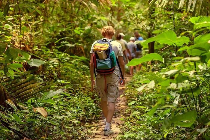 """Best wildlife safari in uttarakhand"",""top wildlife safari in uttarakhand"",""wildlife safari in uttarakhand"",""top safari in uttrakhand"", ""best safari in uttarakhand"",""Camping in jim corbett"",""Uttarakhand Birding tour in jim corbett"",""Jungle safari in jim Corbett"", ""jeep safari in jim corbett"",""best jungle safari in uttarakhand"",""birding tour in uttrakhand"""