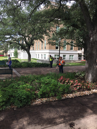 SSC'S PRE AND POST HARVEY WORK