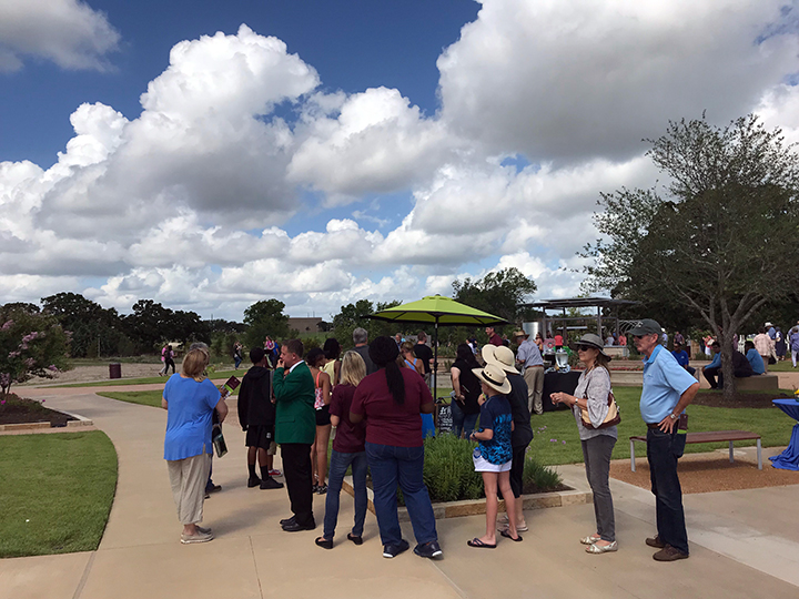 grand opening-popsicle stand