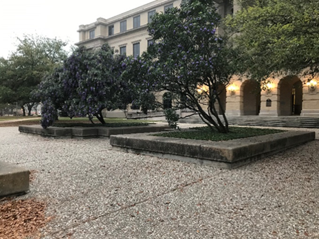 Academic Plaza Before