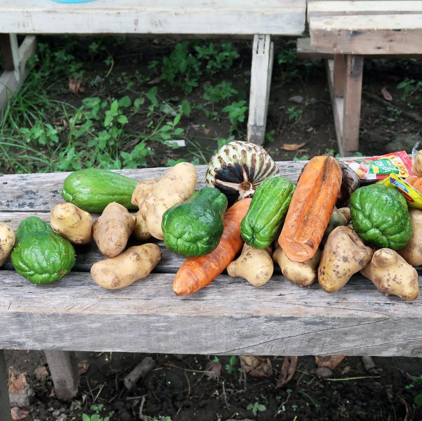 Fresh veggies for lunch