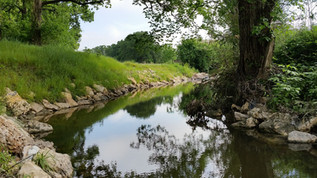 WHITE CREEK ON-CAMPUS RESTORATION EFFORT SELECTED AS #1 PROJECT IN U.S.