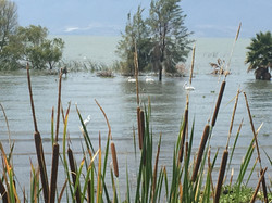 Lac Mexico