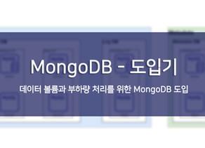 [FLO-Tech] MongoDB - 도입기