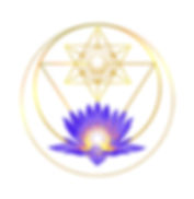 logo_bluelotus_circle.jpg