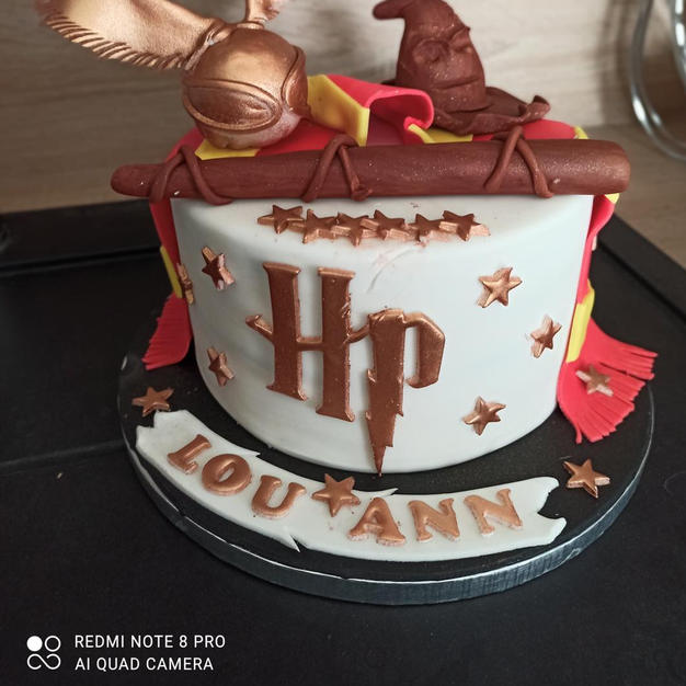cake design thème harry potter