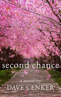 Second Chance E-Book.jpg