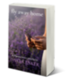 fly-away-home-3d-cover.png