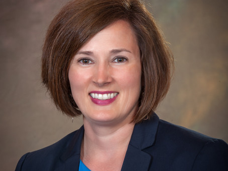 Erin McDonough named new executive director of the Insurance Alliance of Michigan