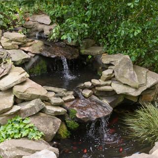 Courtyard Pond