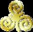 EURO INSTITUTE Gold Logo.png