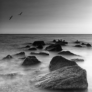© Mark O'Connell Photography ~ Pembroke, MA 02359