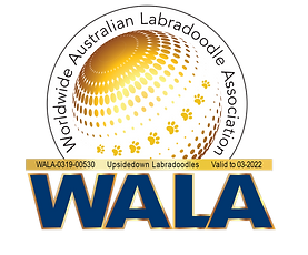 Upsidedown Labradoodles 03-2022WALA Logo.png