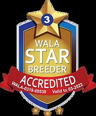 thumbnail_Upsidedown Labradoodles 03-22 Accredited Star Logo.png