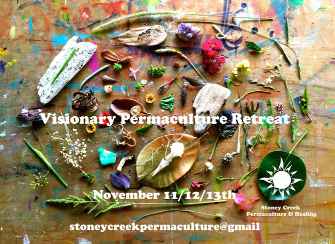 Visionary Permaculture Retreat