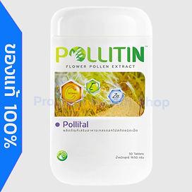 pollital-L-New.jpg