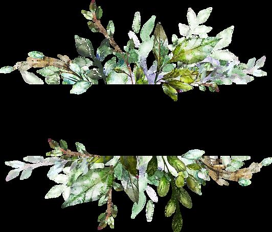 pngarea.com_greenery-png-watercolor-6484