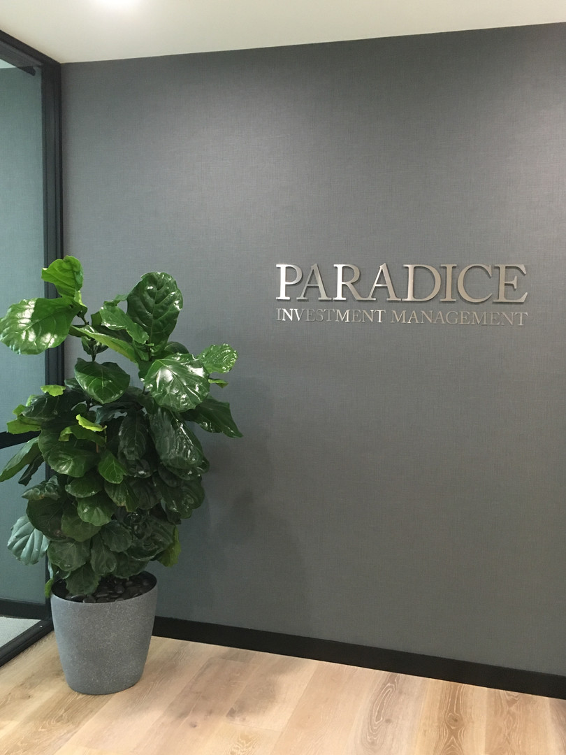 Ficus Lyrata in the office