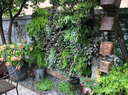 pigweed-events-styling-garden-design-sydney-courtyard-greenwall-rustic-house-residential