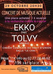 EKKO TOLVY.png