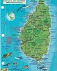 Map of St. Lucia.jpg