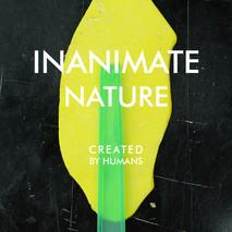 Serafin INANIMATE NATURE 2017-18