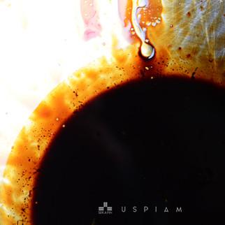 Serafin USPIAM 2016