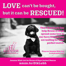 House of Hope Animal Rescue Valentine's