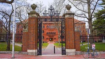 Harvard University Admissions Consultants