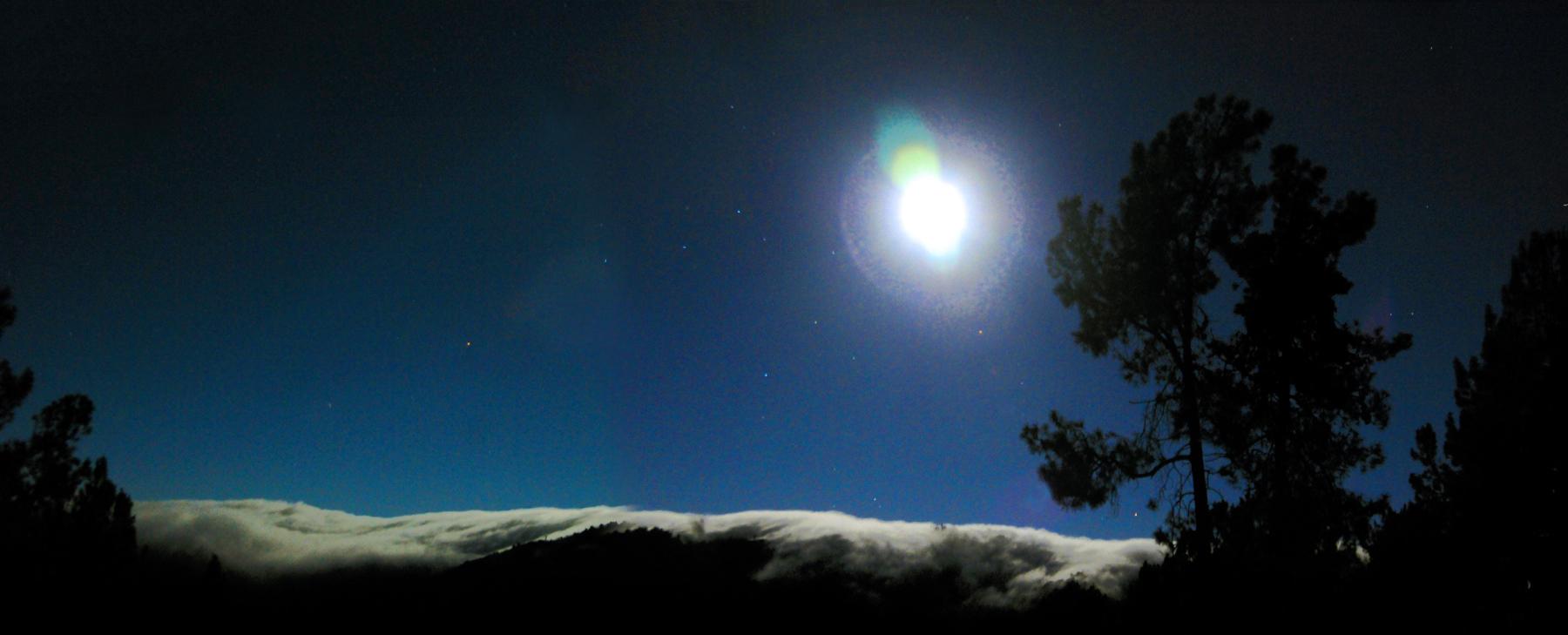 Midnight Ocean Fog