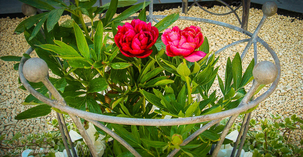 Peony Support