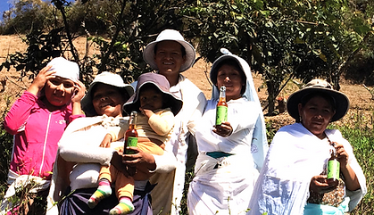 Unsere PartnerInnen: Familie Ramírez von der Kokablatt-Kooperative in Arapata Bolivien