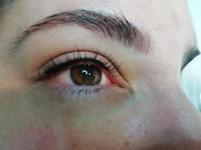 pmu eyeliner- delineado de ojo- micropig