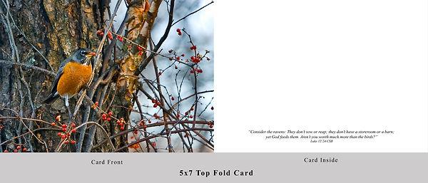 Robin Berry Card.jpg