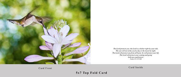 Hummingbird Card.jpg