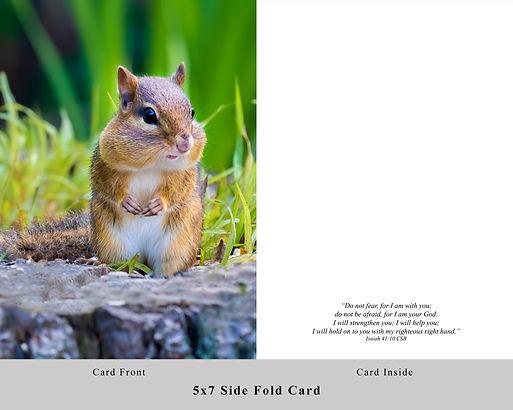 Chipmunk Card.jpg
