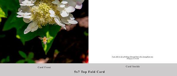 Honey Bee Card.jpg