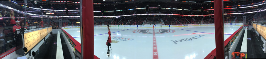 NHL view from between the benches