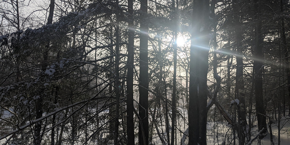 Winter Solstice Forest Bathing, Two Lights State Park  (1)