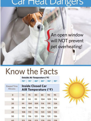 They also provide valuable information to help pet owners.
