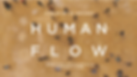 humanflow.png