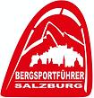 Bergssportführer Verband Salzburg.png