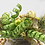Thumbnail: PEAR TREE Decoration