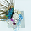 Thumbnail: CALLING BIRDS Decoration